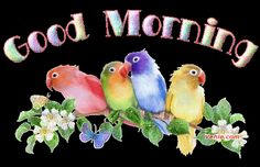 Animated Good Morning | Good+Morning+Greetings+Pictures+-+73.gif