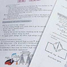 SUSHI AND STUDYING