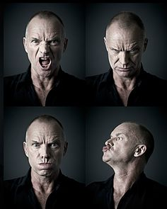 Sting by Andy Gotts