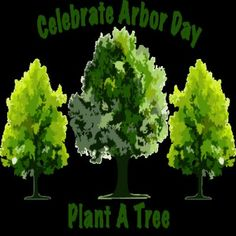 National Arbor Day Guide