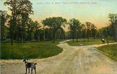 IA-CEDAR RAPIDS-BEVER PARK SCENE-DOG-EARLY-Q20199 in Collectibles, Postcards, US States, Cities & Towns, Iowa   eBay