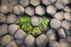 Photo by @jeffmauritzen. A beautiful heart shaped pattern found while exploring the 40000 or so basalt columns that make up the Giant's Causeway in Northern Ireland. Happy Valentine's Day! by natgeotravel