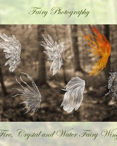 Winter Fairy Snow Frost Wing PNG Overlays | Christy Peterson