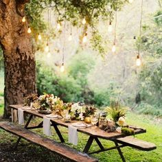 Rustic table outdoors - the light quality is so beautiful.