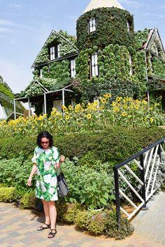 Sukienka uszyta z wykroju Burda 03/2016 model 106 i ogród Miracle Garden Dubaj Burda Patterns, Model, Blog, Scale Model, Blogging, Models, Mockup