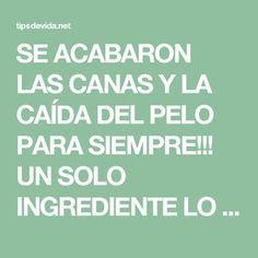 SE ACABARON LAS CANAS Y LA CAÍDA DEL PELO PARA SIEMPRE!!! UN SOLO INGREDIENTE LO RESUELVE!!! - tipsdevida.net