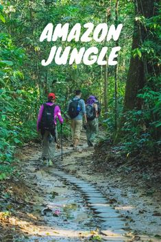 Planning a trip to Peru and the Amazon Jungle is not easy so this is a ridiculously super comprehensive guide on the experience, what to look out for and how to prepare for it.  This guide also dives into ecolodge selections and why Refugio Amazonas rose to the top.