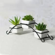 Cheap bottle dispenser, Buy Quality bottle dolls directly from China bottle ring Suppliers: Ceramic flower pots home decoration desktop art decor iron stand flower pots planters simple design two styles available House Plants Decor, Plant Decor, Home Vegetable Garden, Garden Pots, Ceramic Flower Pots, Flower Vases, Iron Pergola, Garden Shelves, Small Balcony Design