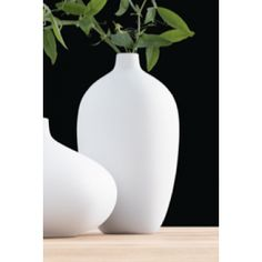 Bestel de ASA-Selection Pure Porcelain 5401/016 snel en veilig! - De Officiële Webshop.