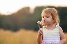 #dandelion #flowers #field #sunset #session #childsession #childphotography #familyphotography #marylandchildphotographer #marylandfamilyphotogarpher #canon #nature #goldenhour