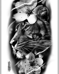 Tiger design available to grab after Xmass #tiger #cherryblooms #design #tigertattoo #blackandgrey #blackandgreytattoo