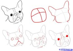 """Determine more information on """"French Bulldog Puppies"""". Look at our internet site. Boston Terriers, Boston Terrier Kunst, Boston Terrier Love, Terrier Puppies, Bulldog Puppies, French Bulldog Drawing, Dog Steps, Images Vintage, Online Drawing"""