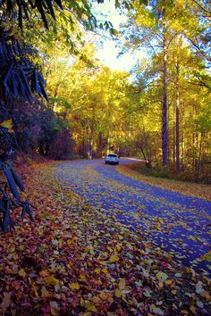 Fall drive on the #BlueRidgeParkway in the North Carolina mountains!