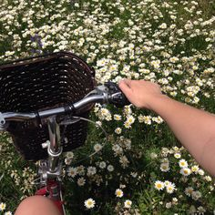 riding a bike with a basket through a field of flowers Kagome Higurashi, Inuyasha, Blue Sargent, Plants Are Friends, Flower Aesthetic, Nature Aesthetic, Aesthetic Vintage, My Flower, Mother Nature
