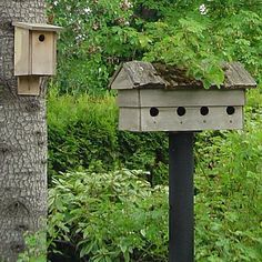 Is Your Bird House Securely Mounted?