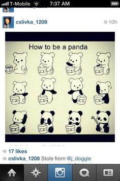 Stole from Instagram. How to be a panda