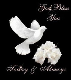 Good evening  ,may God Bless you all | MAY GOD GIVES EACH ONE A GOOD NIGHTS REST AND BLESS YOU ALL TODAY AND ...