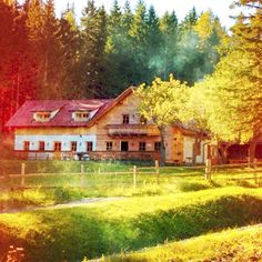 Old wooden house in the forest.