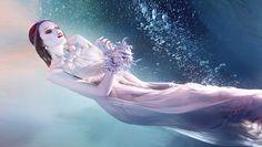 Zena Holloway: underwater photographer and director