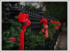 Decorated wrought iron fence in Garden District (photo from Flickr).