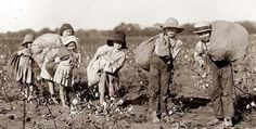 Ireland slavery historyDuring the over Irish children aged 10 to 14 were taken from their parents and sold as slaves in the West Indies, Virginia and New England. In this decade, Irish (mostly women and children) were sold to Barbado Old Pictures, Old Photos, Vintage Photos, Picking Cotton, Irish Men, Historian, One In A Million, Historical Photos, American History