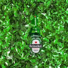 Green green grass of H........