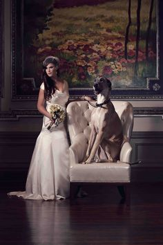 #Bride & #Great #Dane, Paige