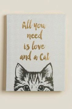 Alles was Sie brauchen ist Liebe und eine Katze Leinwand Wand Dekor All you need is love and a cat canvas wall decor The post All you need is love and a cat canvas wall decor appeared first on Best Pins. Crazy Cat Lady, Crazy Cats, I Love Cats, Cute Cats, Ideias Diy, Cat Room, Canvas Wall Decor, Canvas Walls, Geek Culture