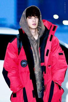 EXO 엑소 || ChanYeol 찬열