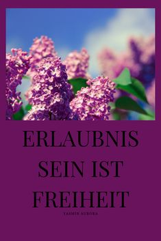Erlaubnis sein ist Freiheit Energie - und Bewusstseinsarbeit, Mindset Coach, Access Consciousness Quote Of The Day, Quotes, Plants, Consciousness, Freedom, Quotations, Plant, Quote, Shut Up Quotes