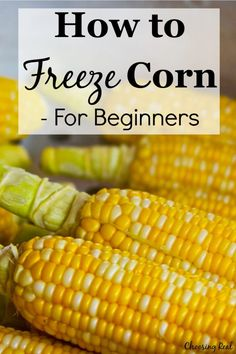 Freezing corn is an economical way to preserve the harvest. Here is a step-by-step tutorial for how to freeze corn. Freezing Fresh Corn, Freezing Vegetables, Freezing Fruit, Frozen Vegetables, Fruits And Veggies, Canning Vegetables, Corn Recipes, Canning Recipes, Vegetable Recipes