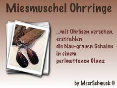 Muschel Ohrringe von MeerSchmuck auf DaWanda.com
