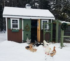 A Week in Farm Photos - January 17th to 23rd