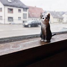 Kinderspielzeug eignet sich auch super als Fotomodell  #Katze #schleich #blogger_de