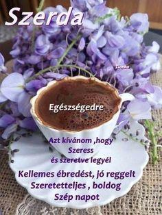 Good Morning, Cabbage, Vegetables, Humor, Food, Buen Dia, Bonjour, Humour, Essen