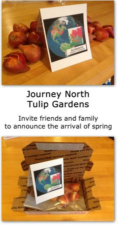 Invite family and friends to announce the arrival of spring