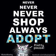 Try not to shop, please Adopt!!!