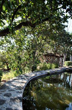 Garden/Patio area outside the McNay Art Museum in San Antonio, TX #sanantonio #mcnay #scenery