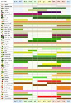 calendrier_legumes                                                                                                                                                                                 Plus