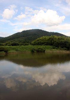 桜井市 箸中 三輪山 夏風景