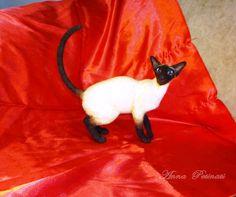 """Gallery.ru / Isabel - siamská kočka """"Isabel"""" - petinati"""