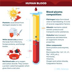 It's amazing how complex our blood is❤ Have you or a loved one donated blood in the past? Share your story with us. Study Chemistry, Chemistry Lessons, Chemistry Experiments, Science For Kids, Science And Technology, Science Facts, Fun Facts, Osmotic Pressure, Subscriptions For Kids
