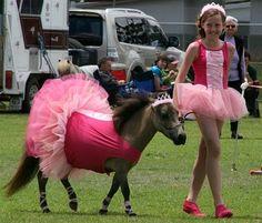 Ballerina horse costume