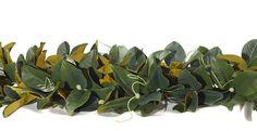 Magnolia Garland 6' (GG02): Magnolia Garland, 6'