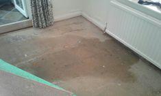 Burst water pipe buried in concrete floor. Water Pipes, Concrete Floors, Mother Nature, Tile Floor, Homes, Shape, Flooring, Houses, Water Fed Pole