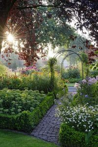 #Fresh Garden with Sun Raising