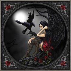 ♡___╋ I love Gothic ╋___