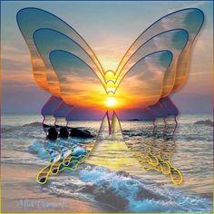 Beautiful Photos Of Nature, Beautiful Gif, Beautiful Sunrise, Animals Beautiful, Watch Wallpaper, Cute Wallpaper Backgrounds, Cellphone Wallpaper, Cute Wallpapers, Butterfly Wallpaper