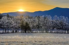 A beautiful frosty day in the Smoky Mountains
