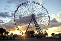 La Ruota panoramica di Rimini (RN) - #tramonto #ruota #panorama #sky #italy Rue, Sweet Dreams, Ferris Wheel, Places To Travel, My Dream, Fair Grounds, Night, Travel Destinations